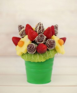 fruit-delight