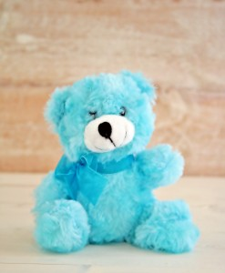 teddy-blue